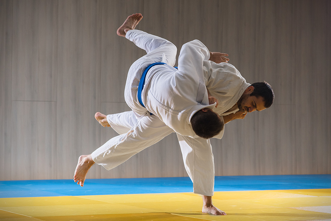 What Is The Easiest Martial Art To Learn At Home? – Lil